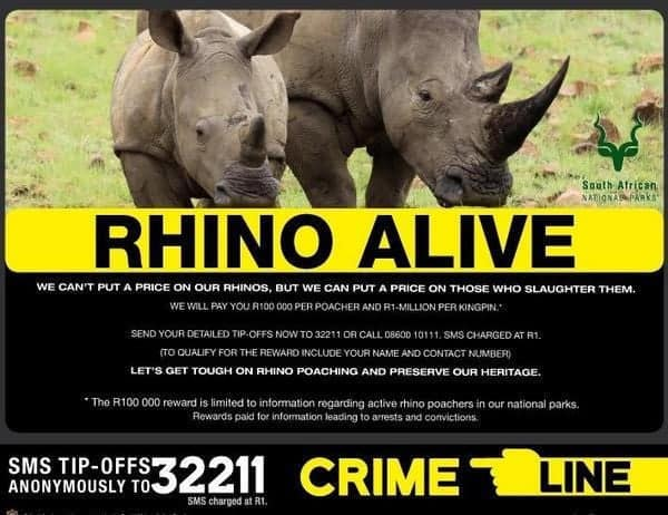 South Africa: Major boost in the fight against rhino poaching