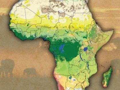 New Map Sharpens View of African Ecosystems African Conservation