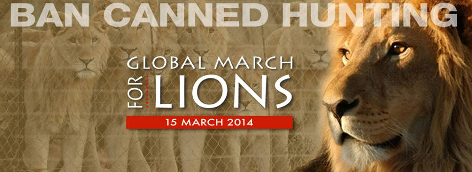 Global March for Lions ready to roar against canned lion hunting