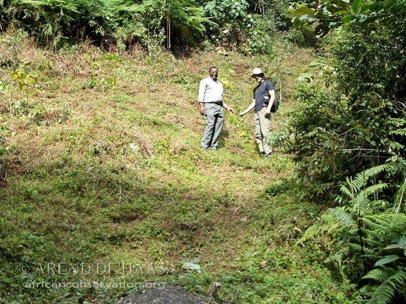 Sebastian Chuwa inspects Mpingo tree planting sites (Photo: Arend de Haas)