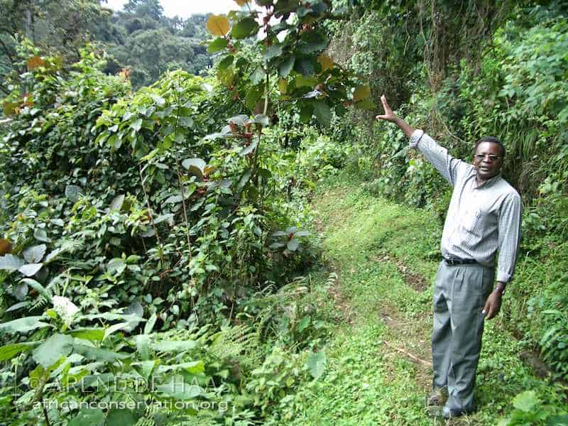 Tanzania's Conservation Icon and Botanist Sebastian Chuwa passes away