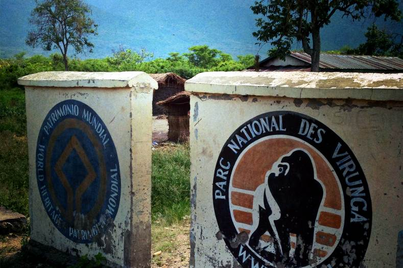 Victory for Virunga? British oil company agrees to end its operations in Africa's oldest national park