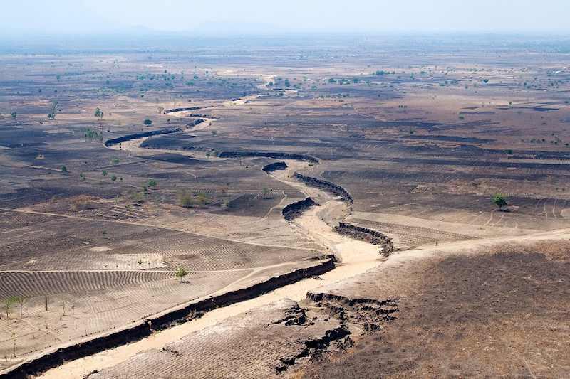 Malawi deforestion