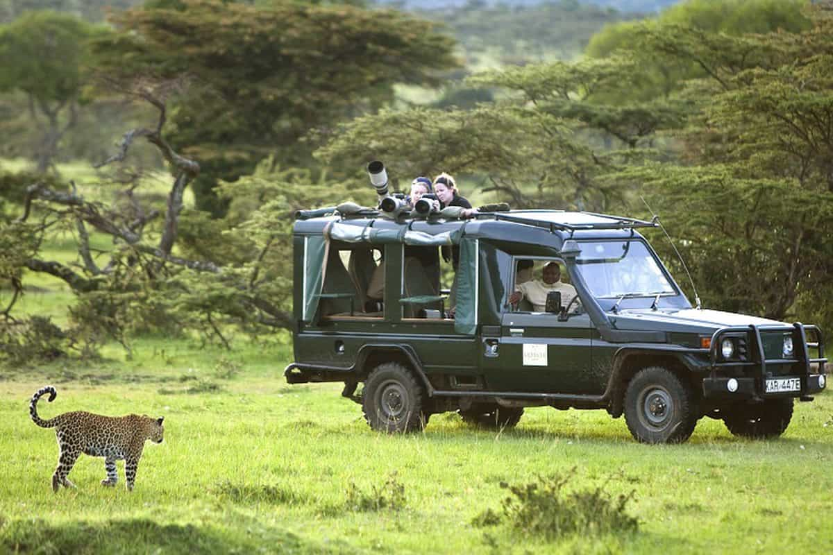 New conservation safaris launched that directly benefit wildlife projects