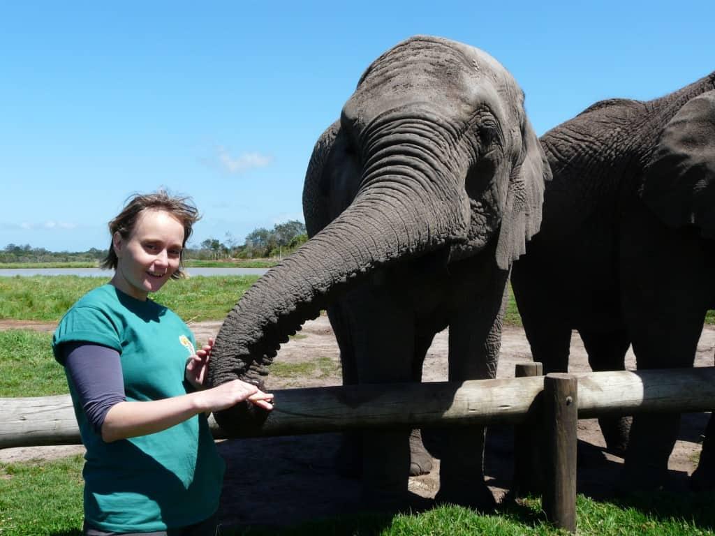 elephant-volunteer-programme