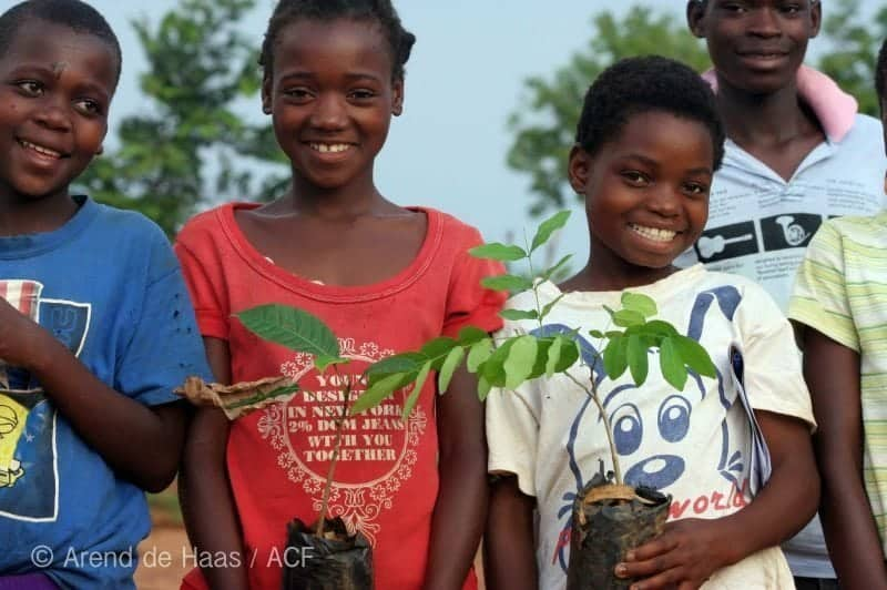 tree-planting-reforestation_IMG_1329