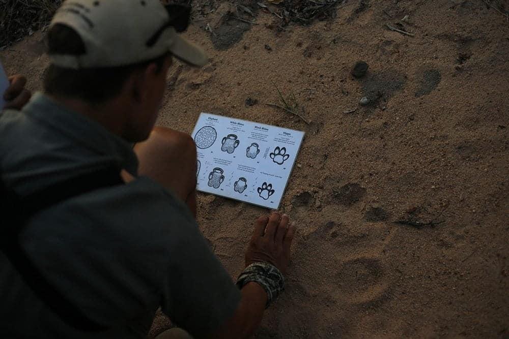 Tracker-012.jpg