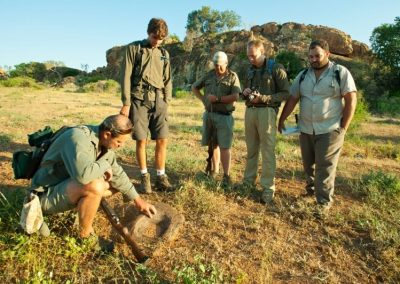African-Animal-Tracking-Course-1