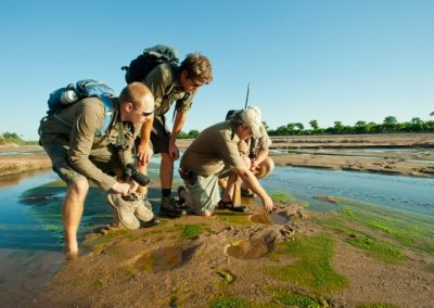 African-Animal-Tracking-Course-12