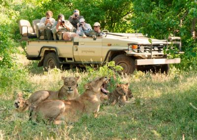 African-Animal-Tracking-Course-6