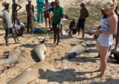fisheries-research-volunteer