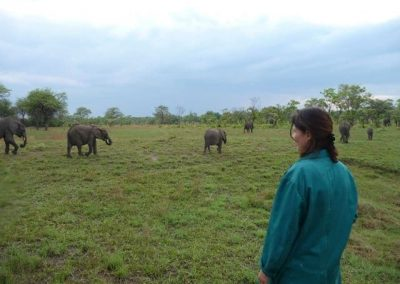 zambia-elephant-orphanage-1