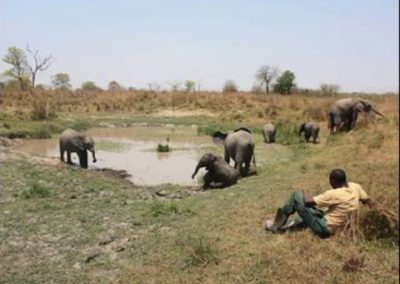zambia-elephant-orphanage-7