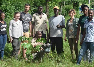 treeplanting-kenya-volunteer