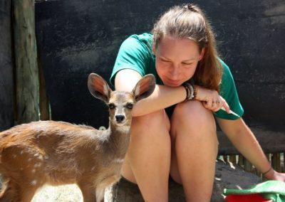 Working with wildlife and underpriviledged children 7