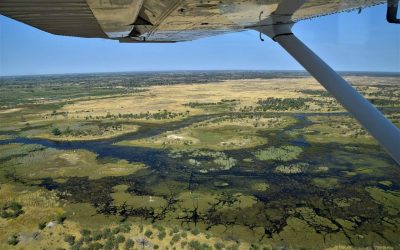 Botswana's Okavango Delta is created by a delicate balance, but for how much longer?