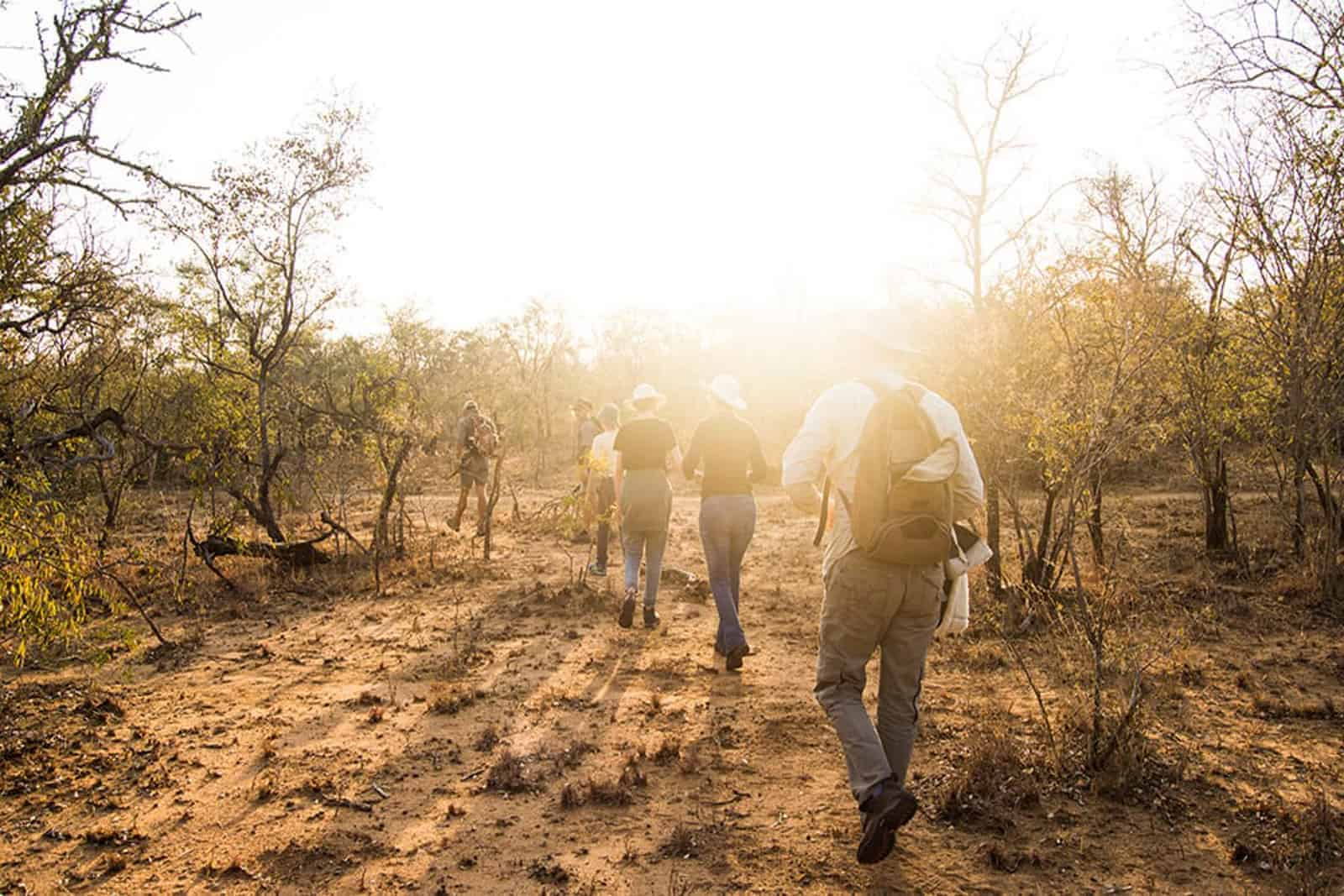 online field guiding course